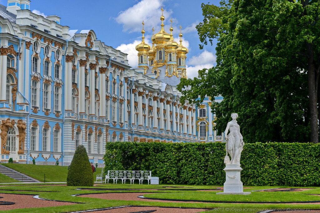 встретить екатерининский дворец в санкт петербурге фото нам